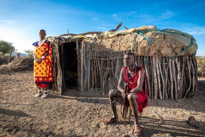 Maasai Homestead