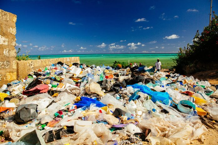 Litter at the Kenyan Coast