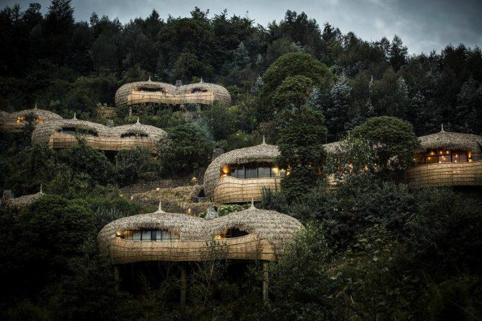 Bisate Wilderness Lodge