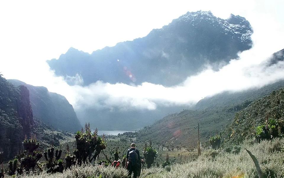Rwenzori Hike
